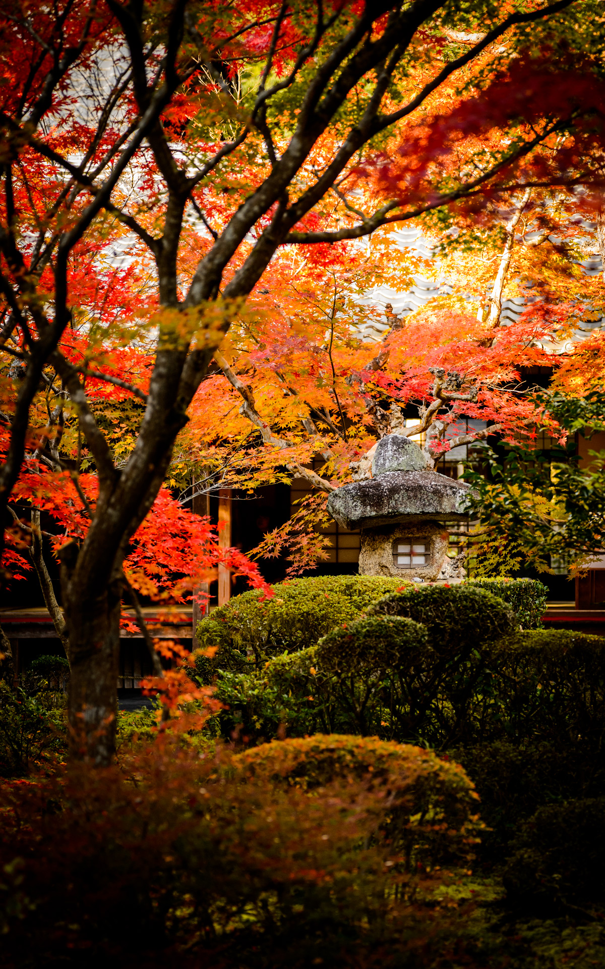 Jeffrey Friedl's Blog » More Japanese-Garden Desktop Backgrounds