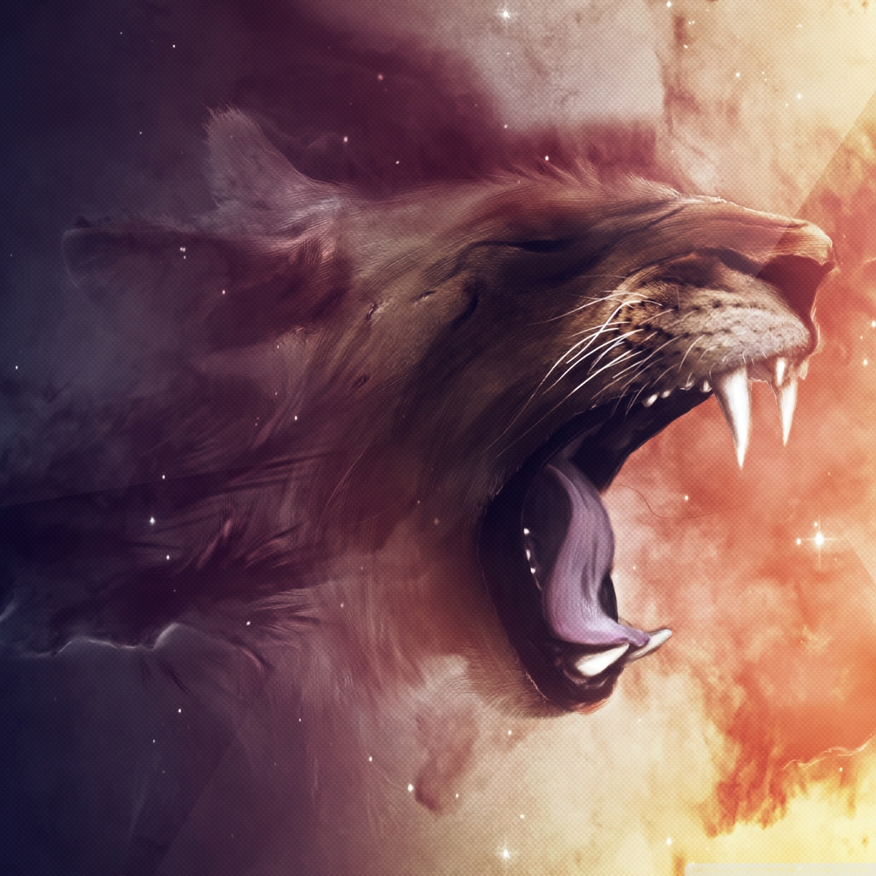 Lion HD desktop wallpaper : Widescreen : High Definition