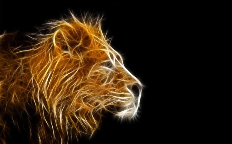 3D Full HD Wallpaper Lion | Hd Wallpapers BEE