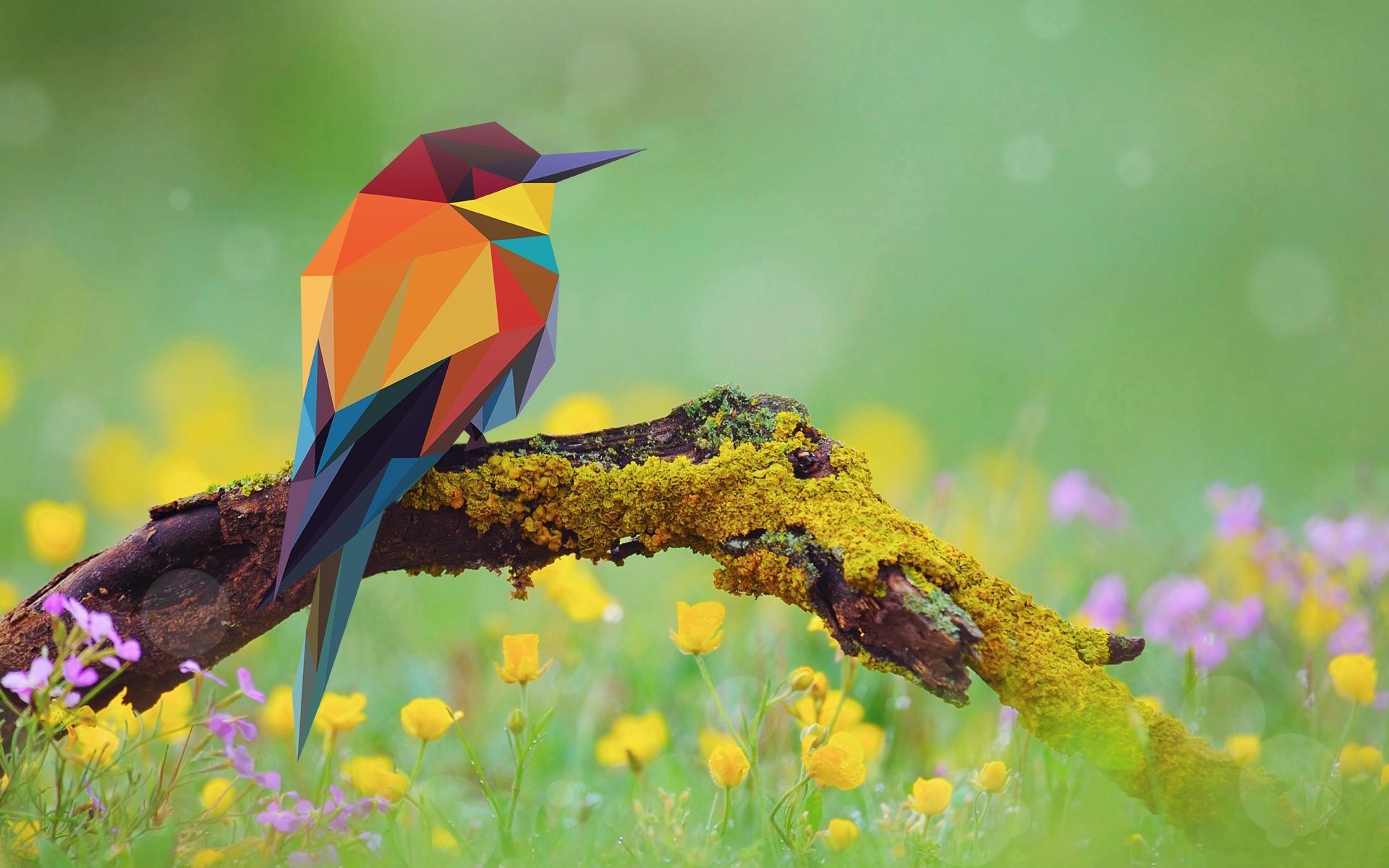 Bird Abstract Art Wallpaper | Abstract HD Wallpapers