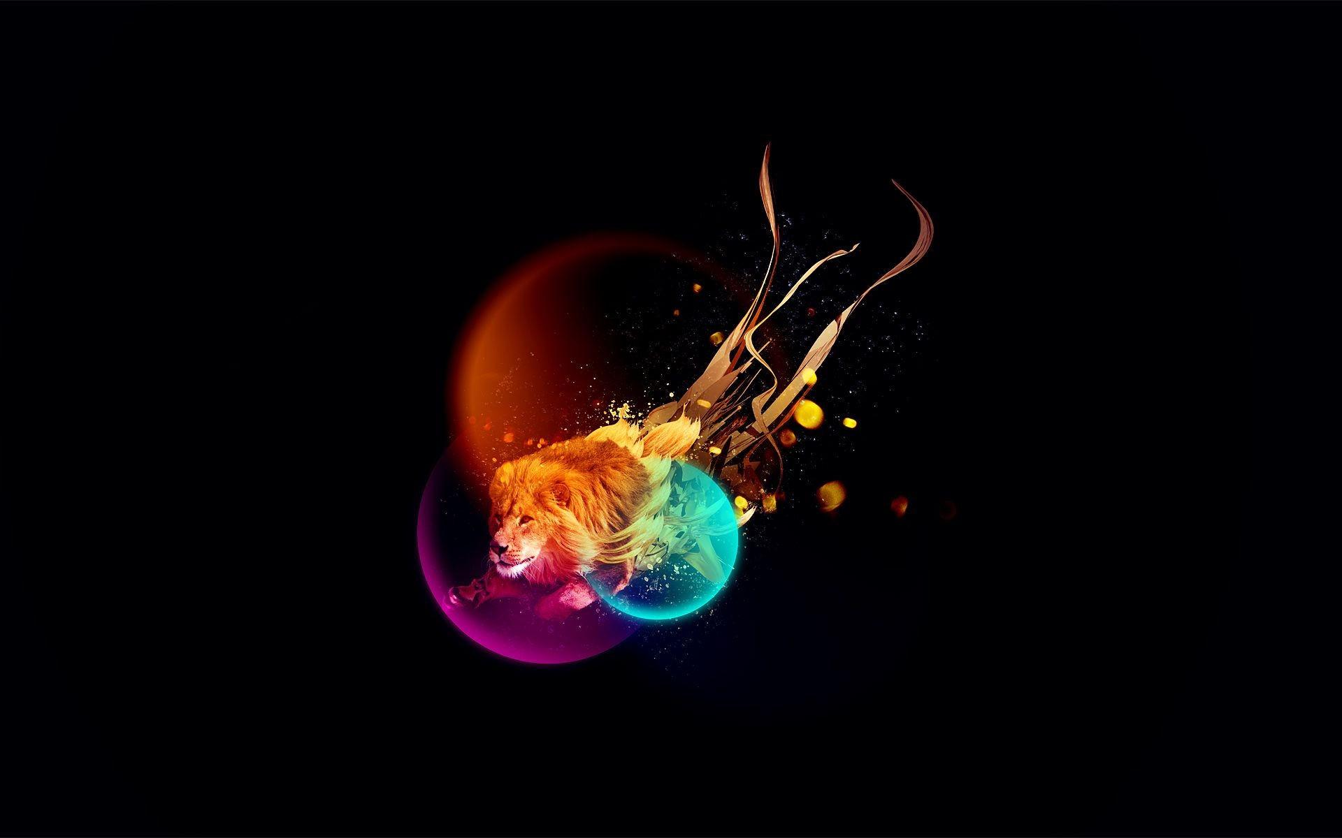 Colorful abstract lion wallpaper 30967 | ImgStocks com