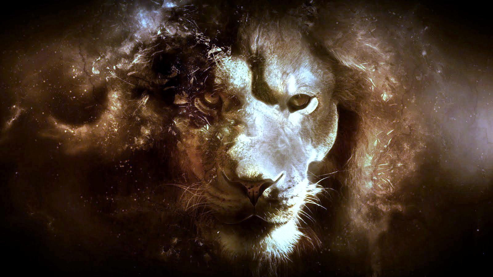 Lion Wallpapers HD Backgrounds, Images, Pics, Photos Free Download