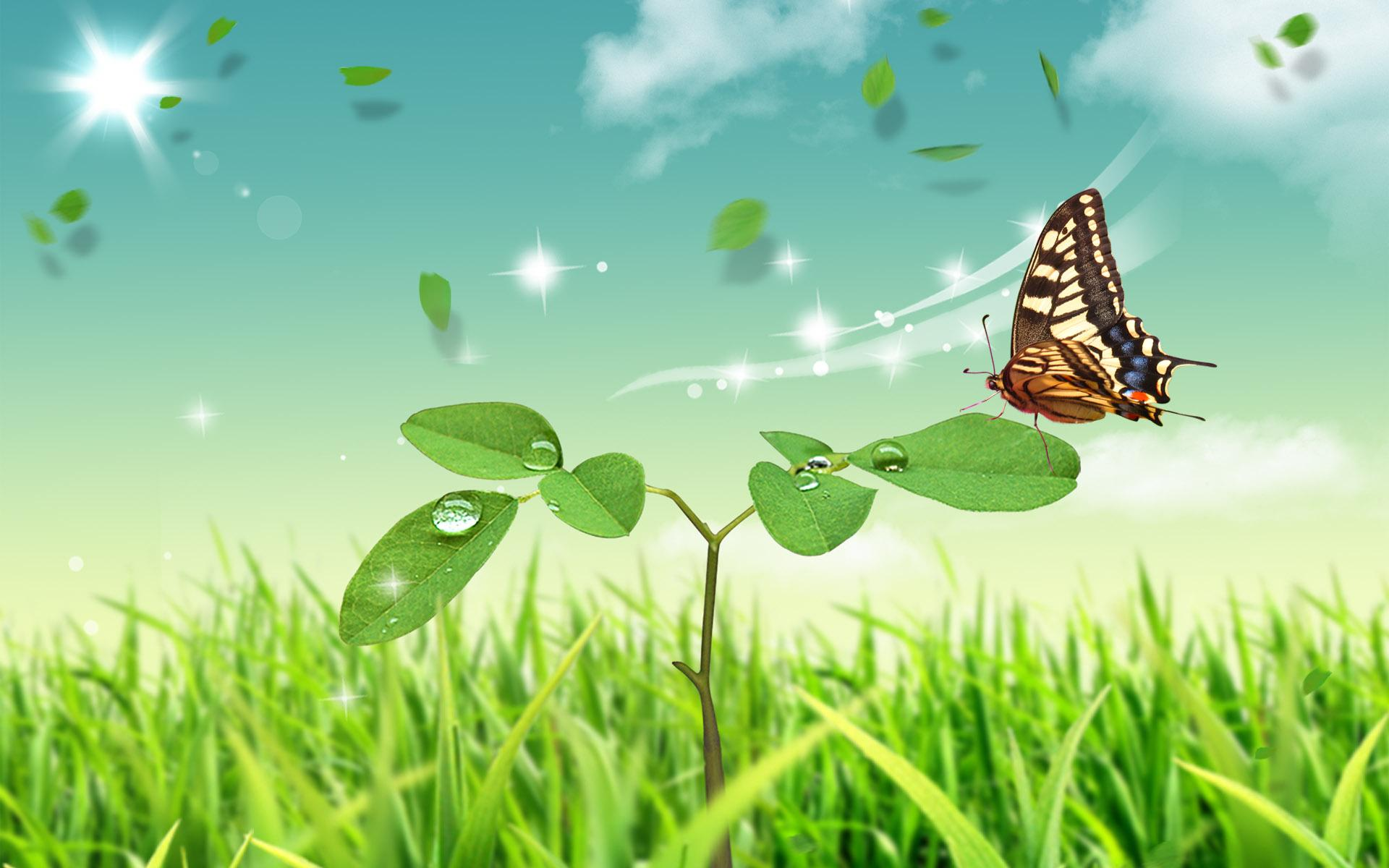 Abstract Nature Butterfly Hd Wallpaper | Download cool HD