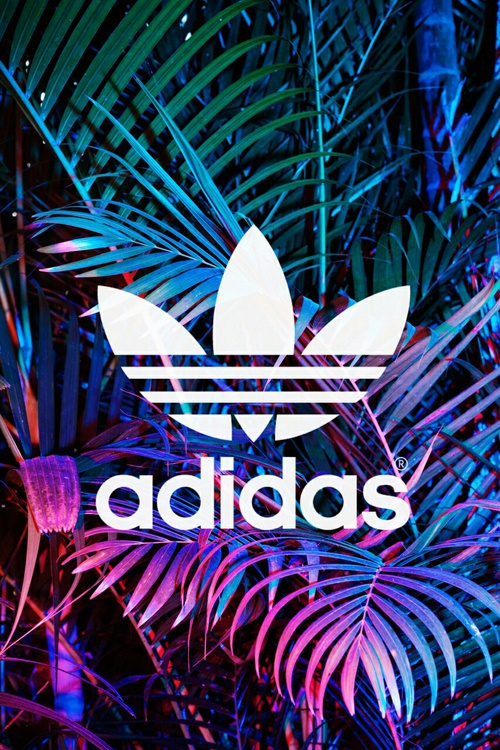 Adidas Backgrounds Group (66+)