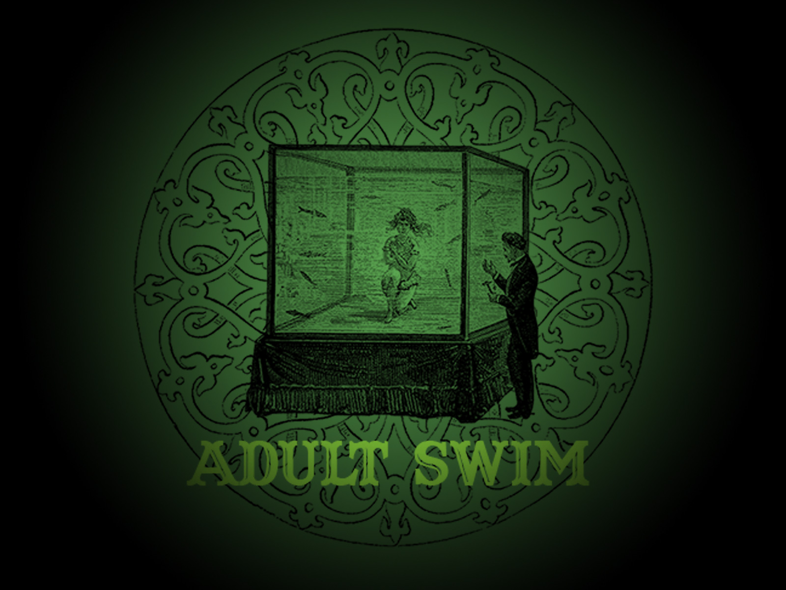 adult swim Wallpaper Backgrounds