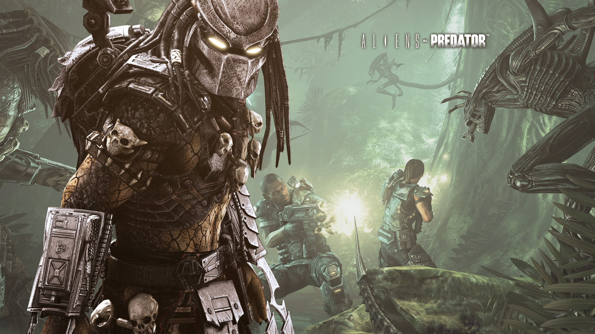 Predator Vs Alien Wallpaper