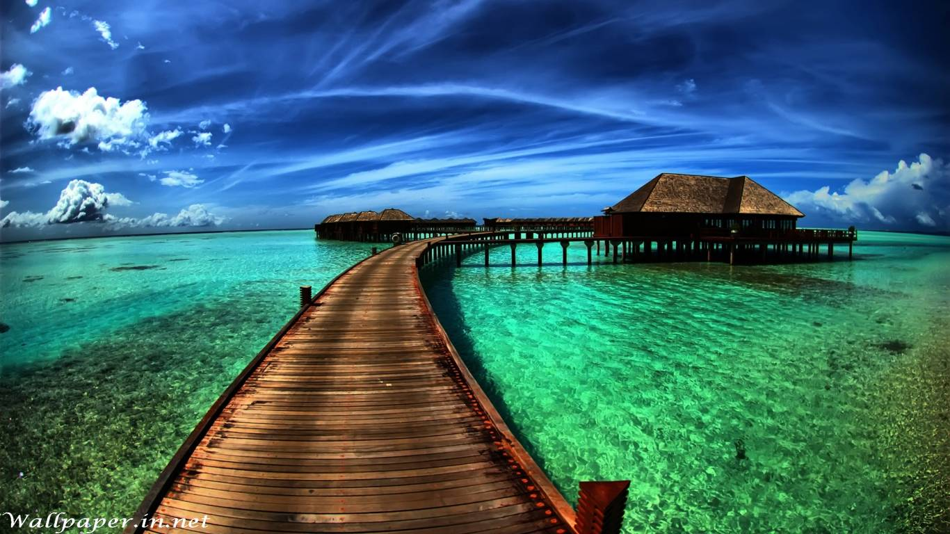 Amazing Hd Wallpapers Download