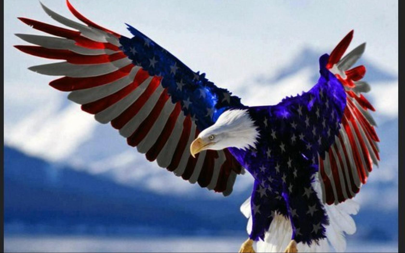 Desktop eagle and american flag pictures wallpaper | American
