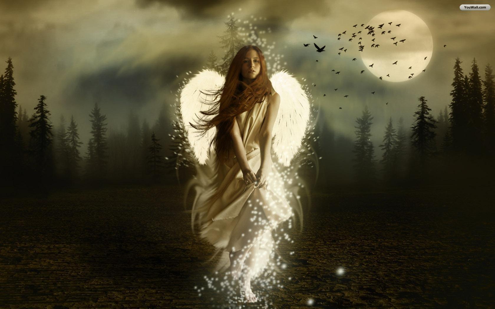 1000+ ideas about Dark Angel Wallpaper on Pinterest   Dark angel