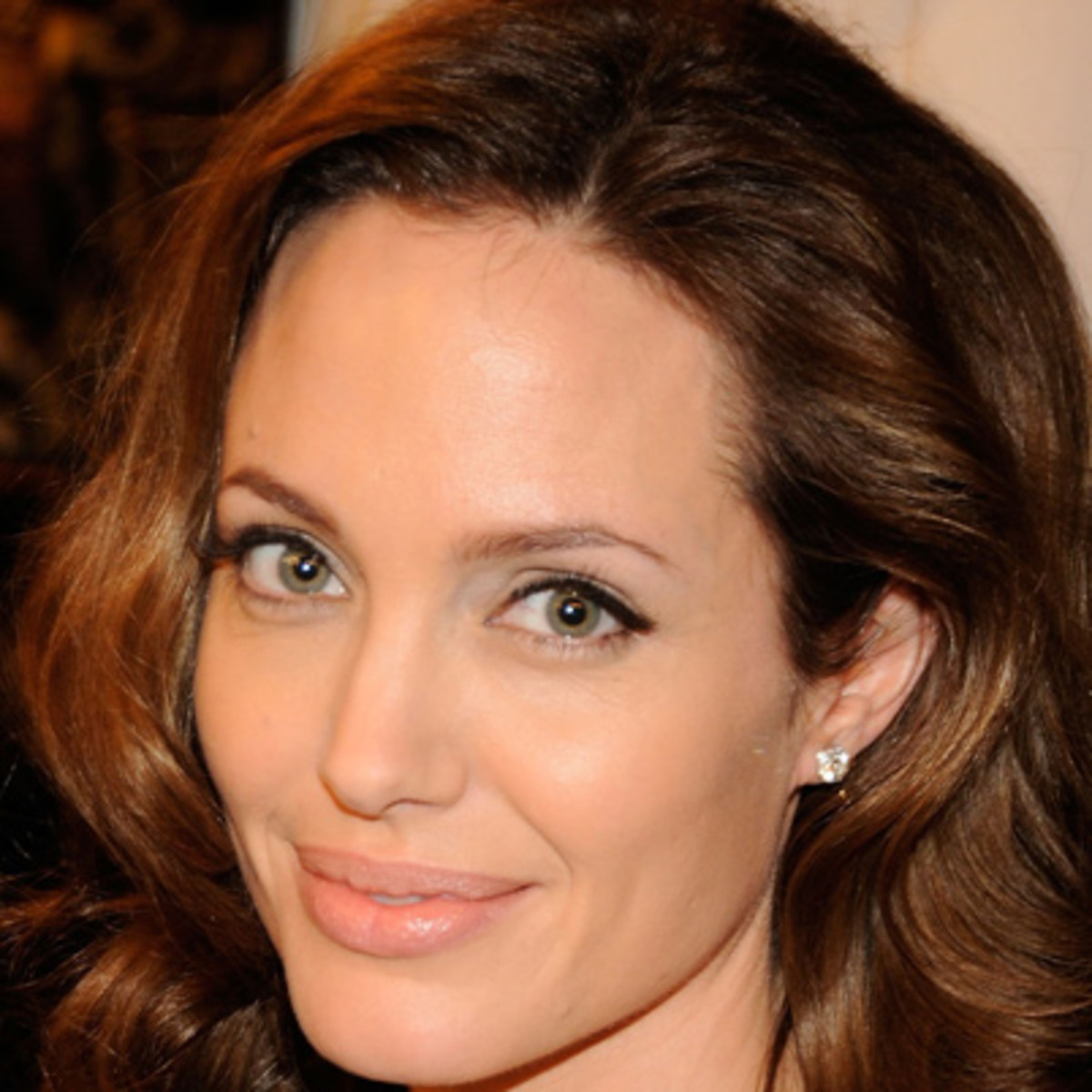 Angelina Jolie - Actress, Activist, Director, Producer, Film Actor