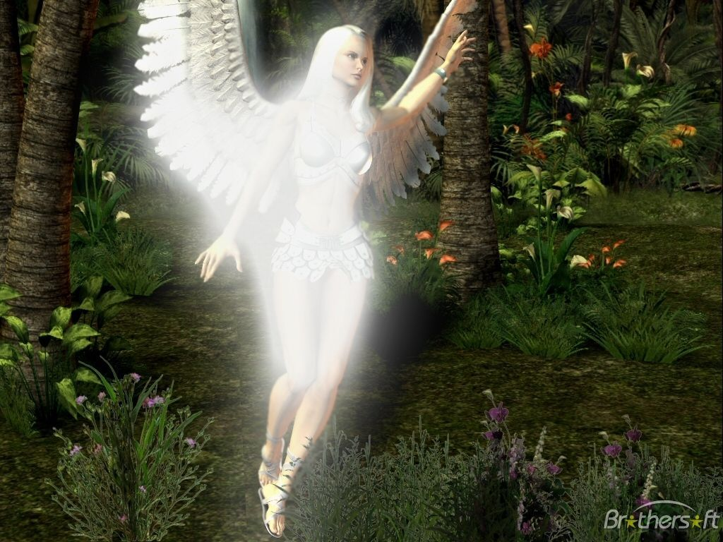 Angel Wallpapers Free - Wallpaper Cave