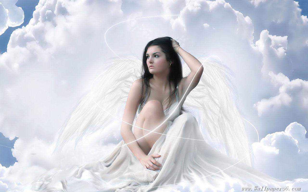 Collection of Free Angel Wallpaper Downloads on HDWallpapers