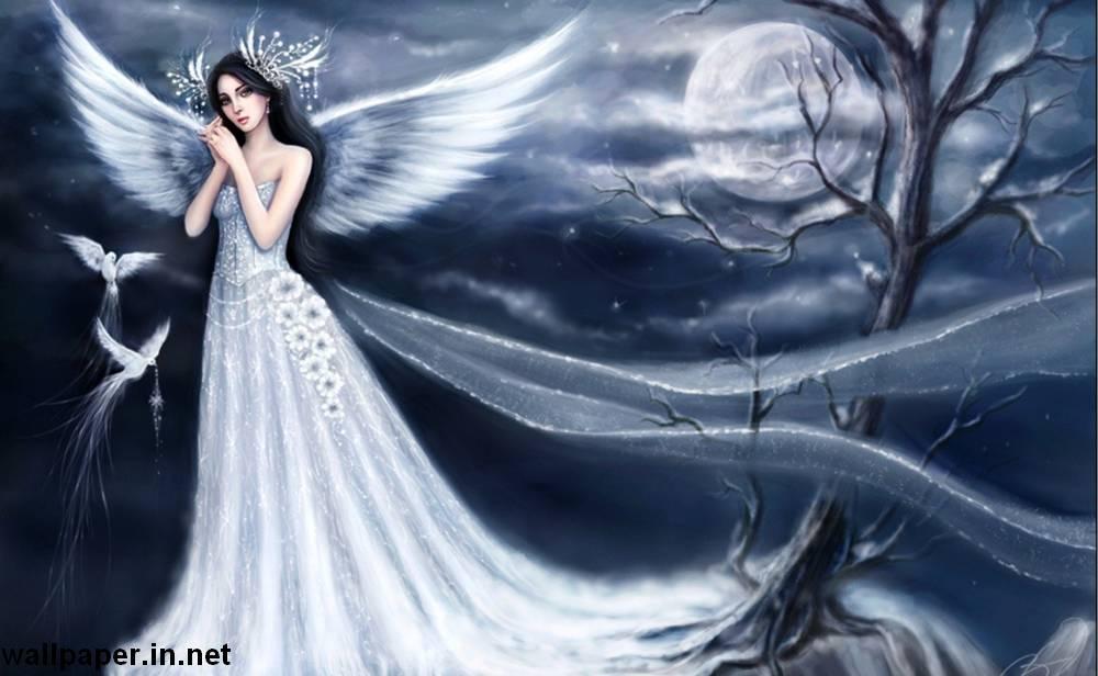 59 angels wallpaper download Pictures