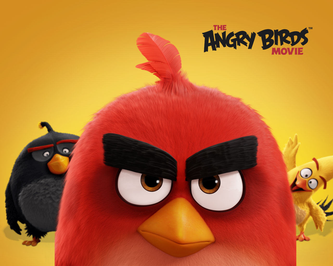 Angry Birds Hd Wallpapers Sf Wallpaper