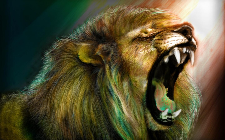 angry lion hd wallpaper - sf wallpaper