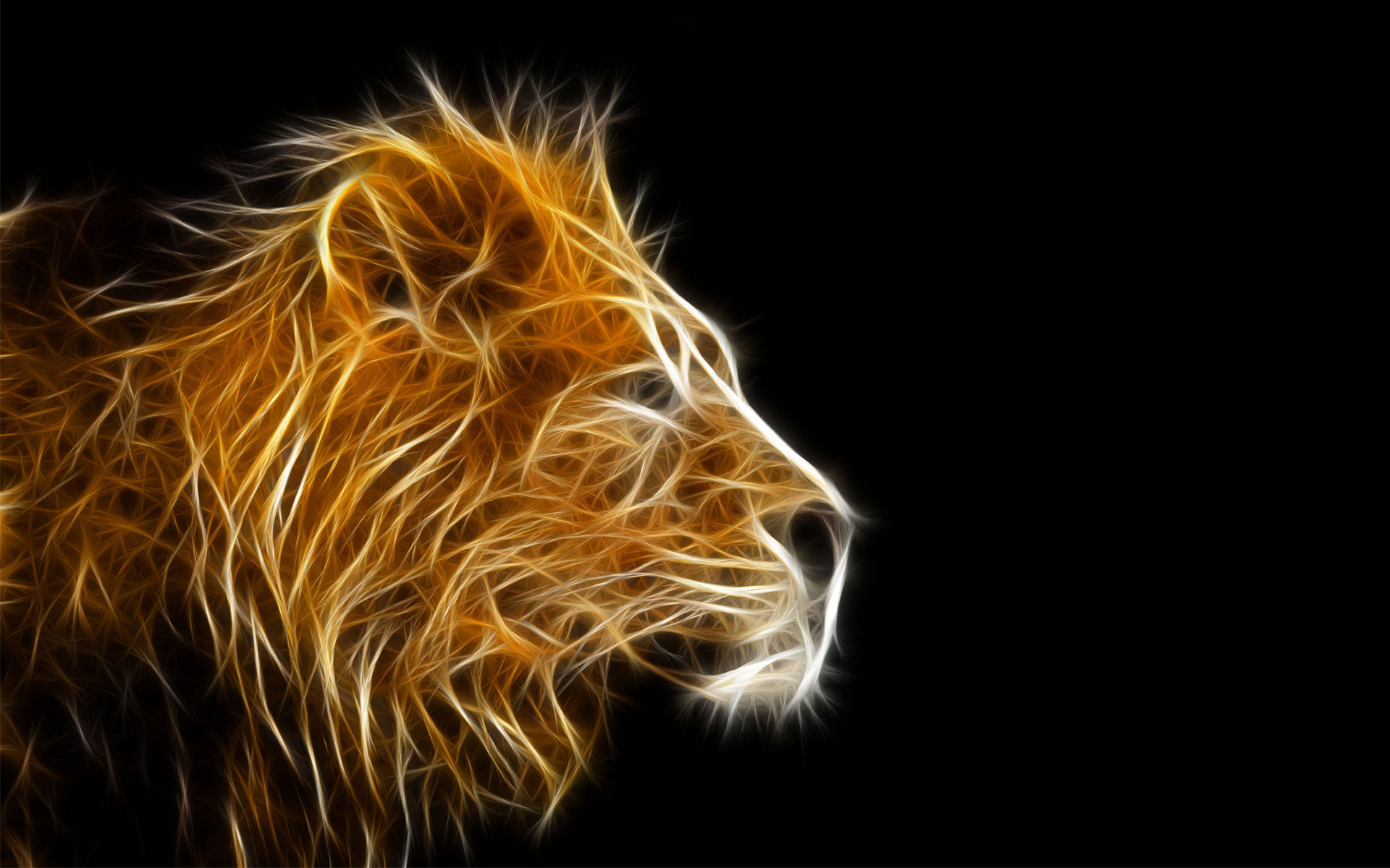 Best 3D Animal Wallpaper | HD Animated Animal Wallpaper