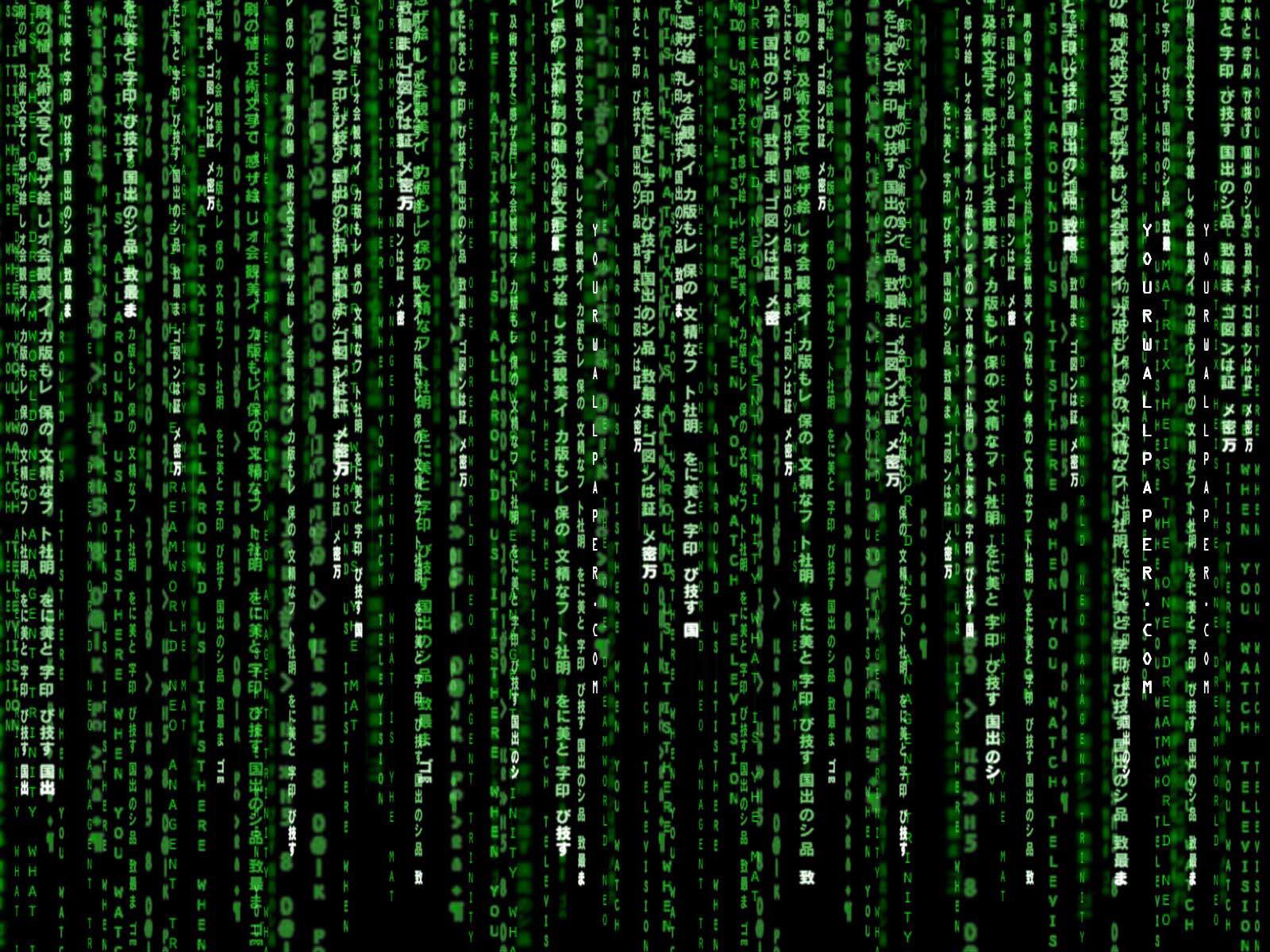 Animated Matrix HD Wallpaper   PixelsTalk Net