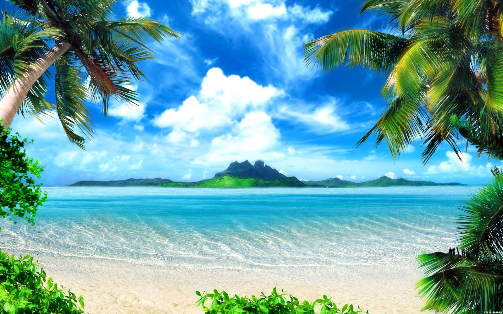 65 backgrounds beach Pictures