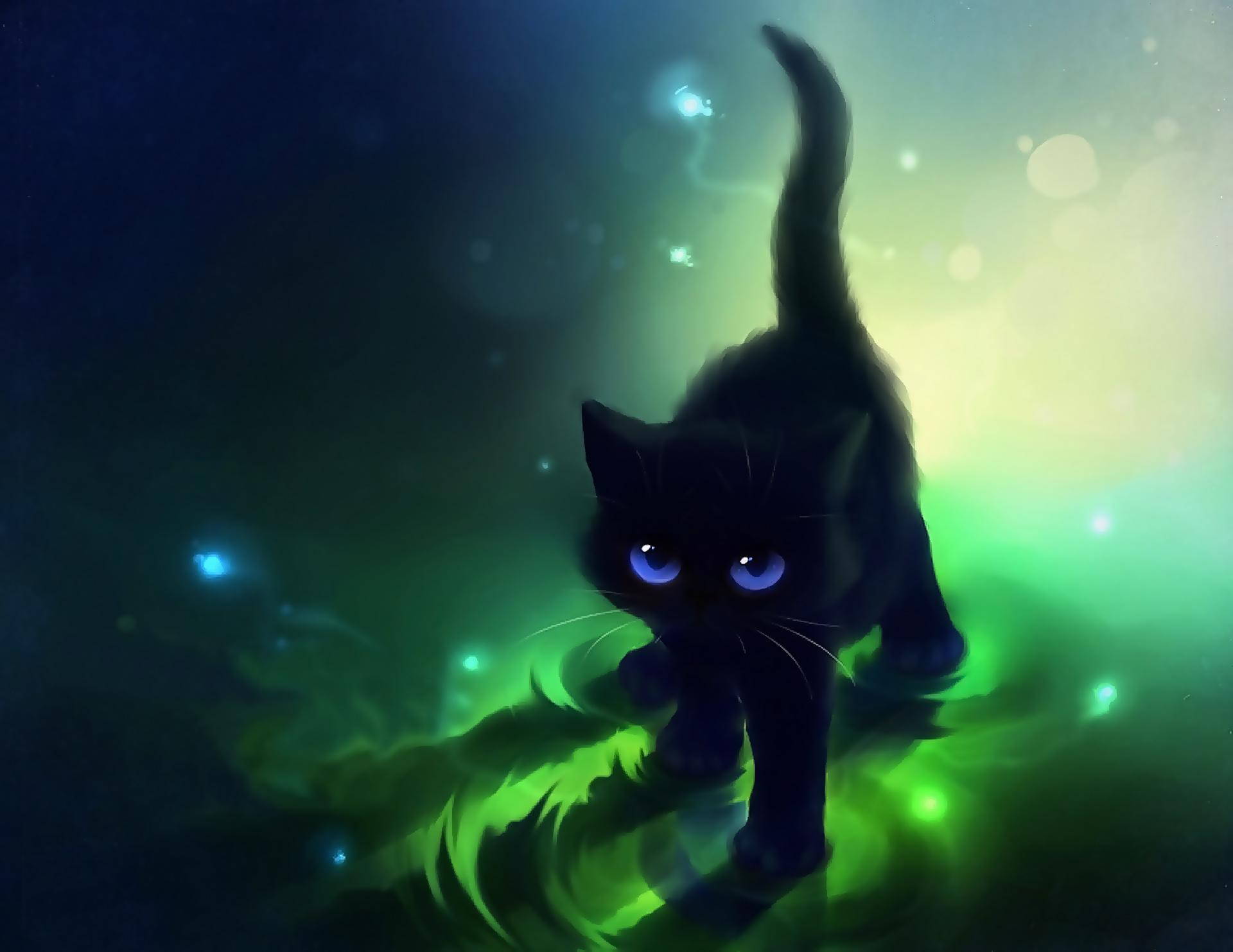 78 Best images about Cat animae on Pinterest | Cats, Black cat