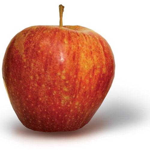 Home - New York Apple Growers - NY Apple Association