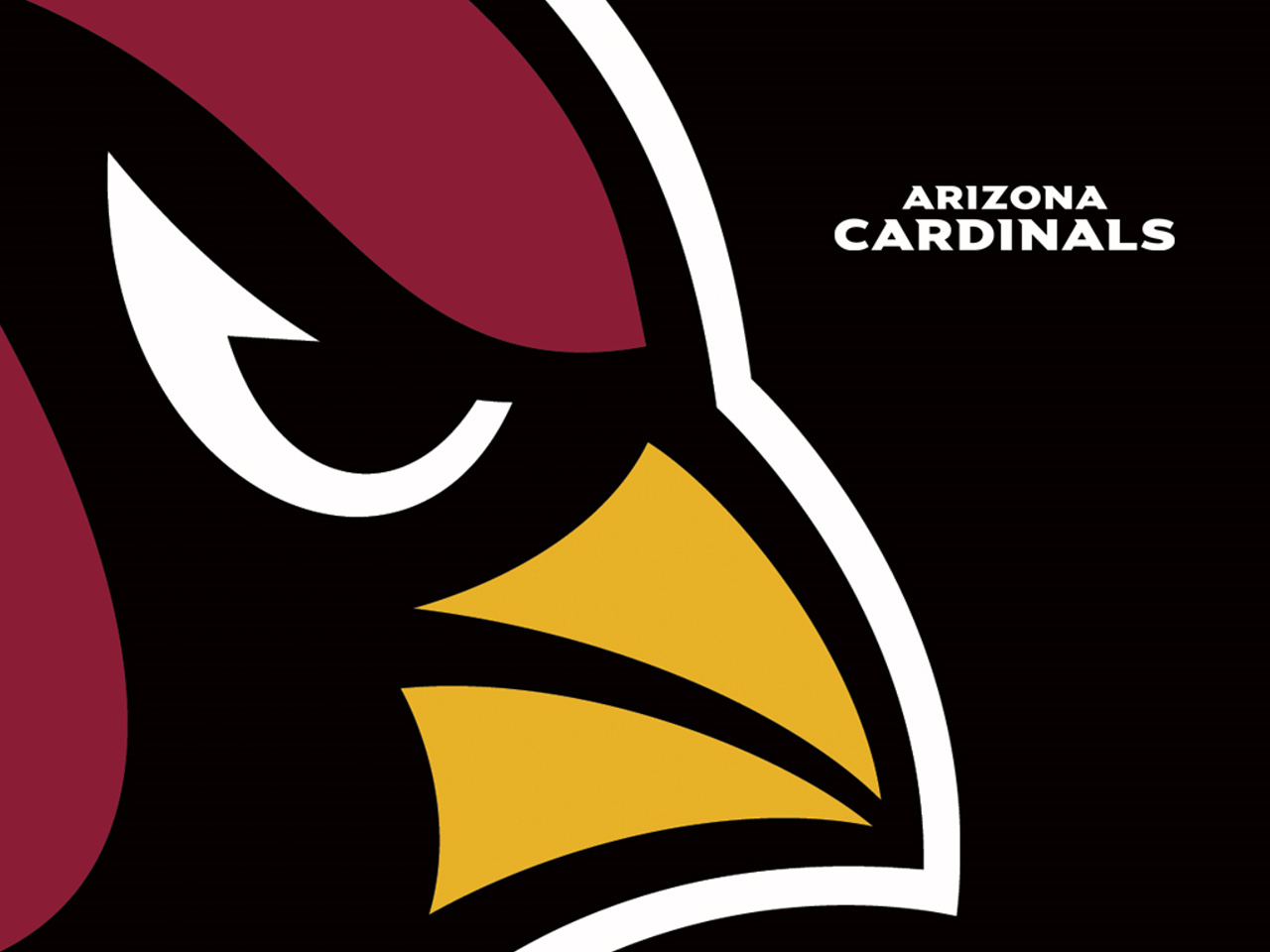 Arizona Cardinals | Trending pictures | Pinterest | Arizona