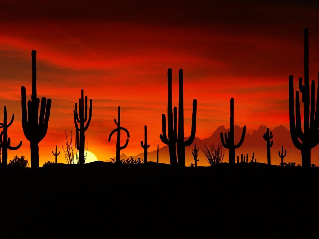 arizona desert wallpaper - sf wallpaper