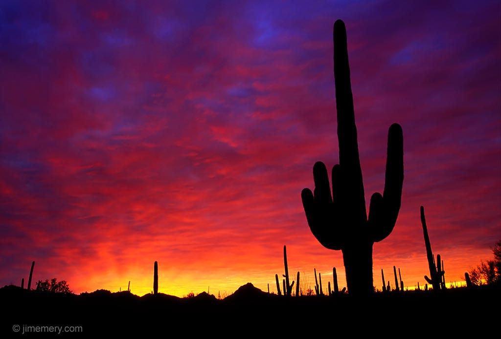 Arizona Desert Desktop Wallpaper - WallpaperSafari