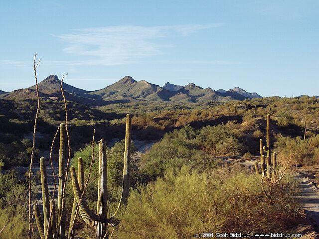 Arizona Desert Scenes Wallpaper - WallpaperSafari