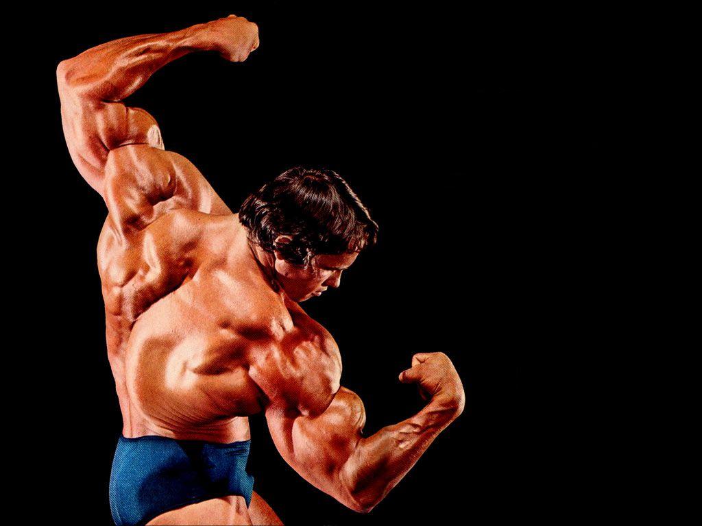 Bodybuilding Wallpapers HD 2015