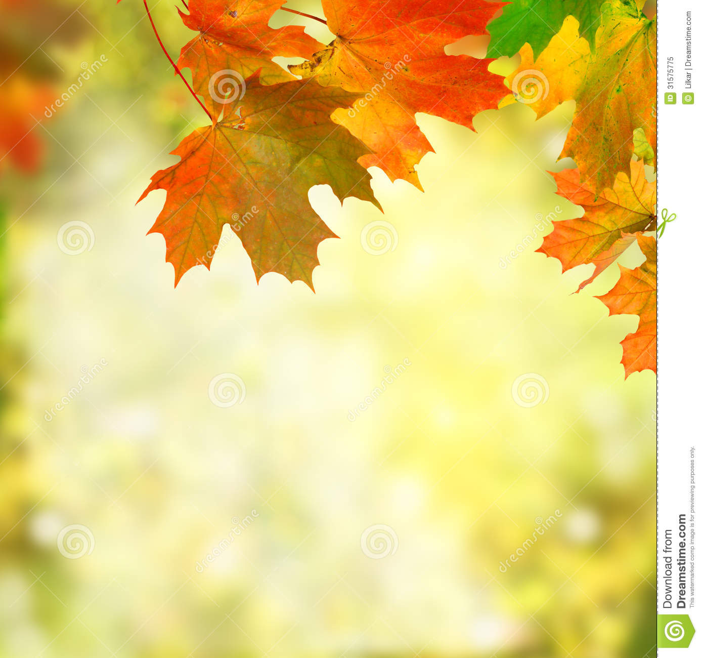Autumn Background - HDWPlan
