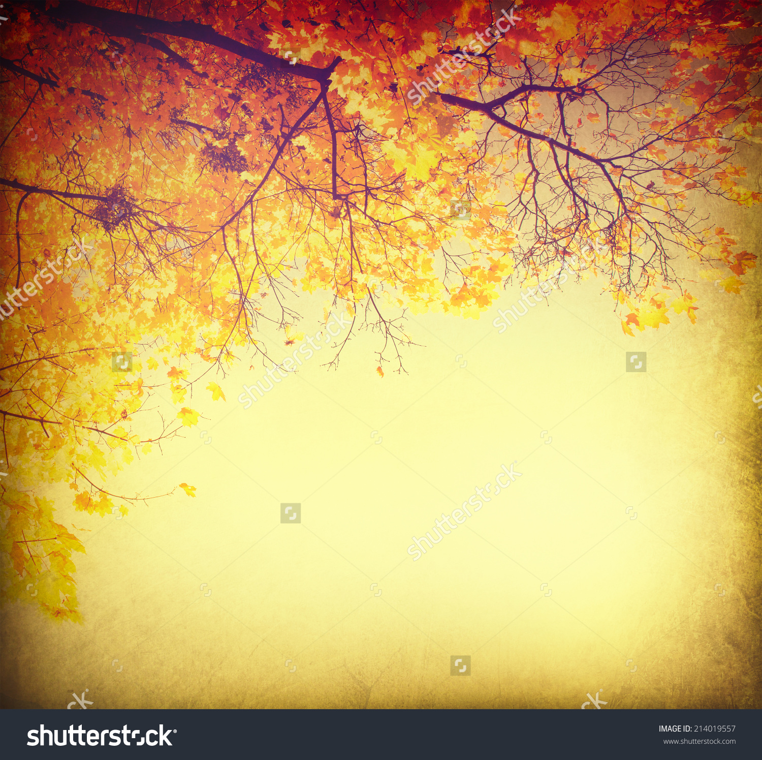 Autumn Background Fall Abstract Vintage Autumnal Stock Photo