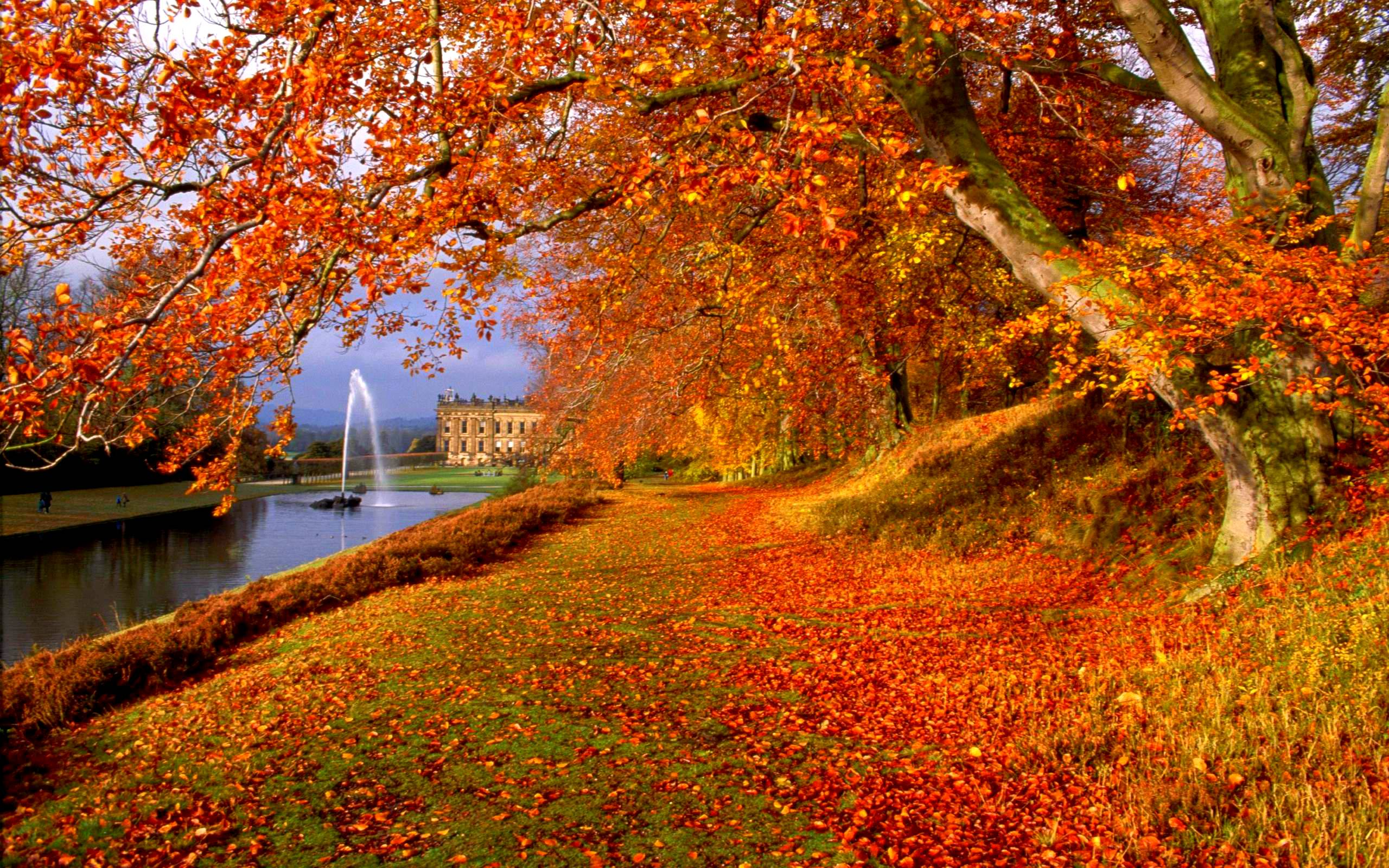 Autumn Backgrounds Image - Wallpaper Cave