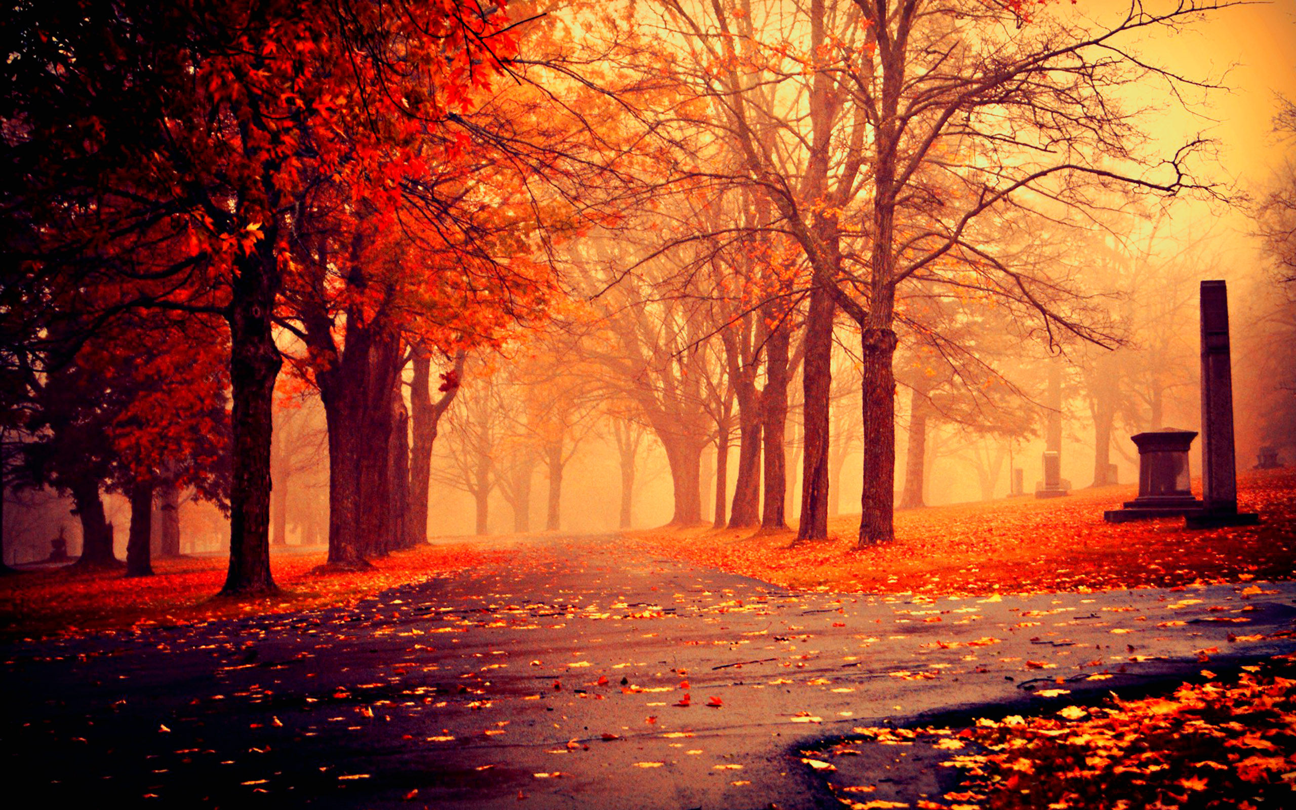 Cute Autumn Wallpapers Group (58+)