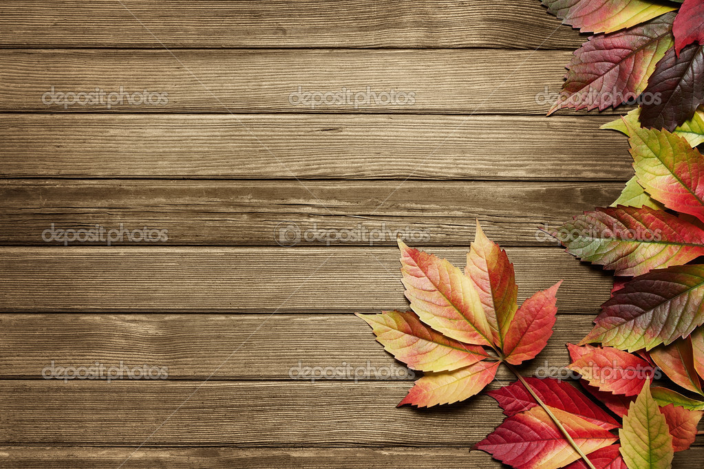 Autumn background — Stock Photo © Rangizzz #6968372