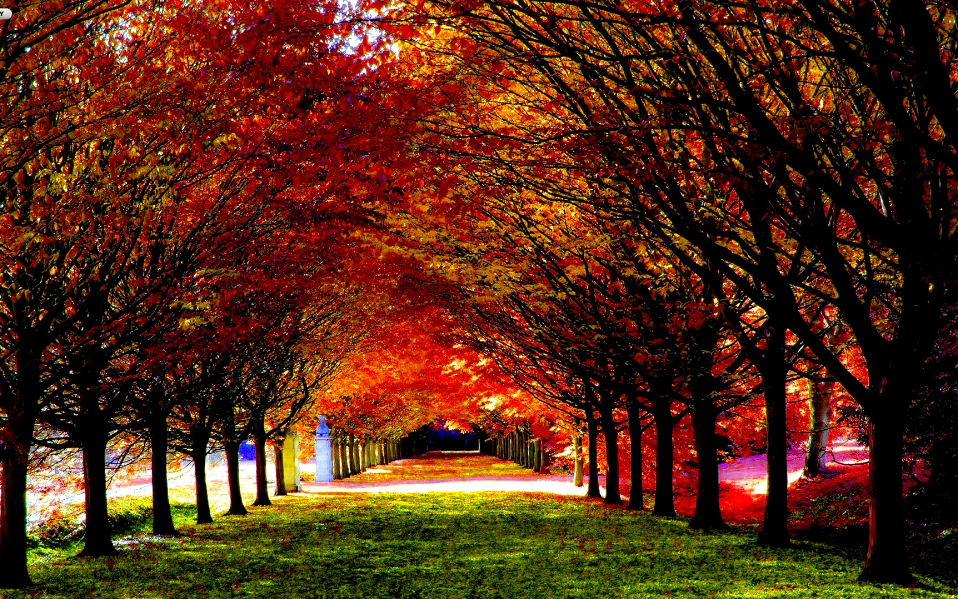17 best ideas about Autumn Desktop Wallpaper on Pinterest | Fall