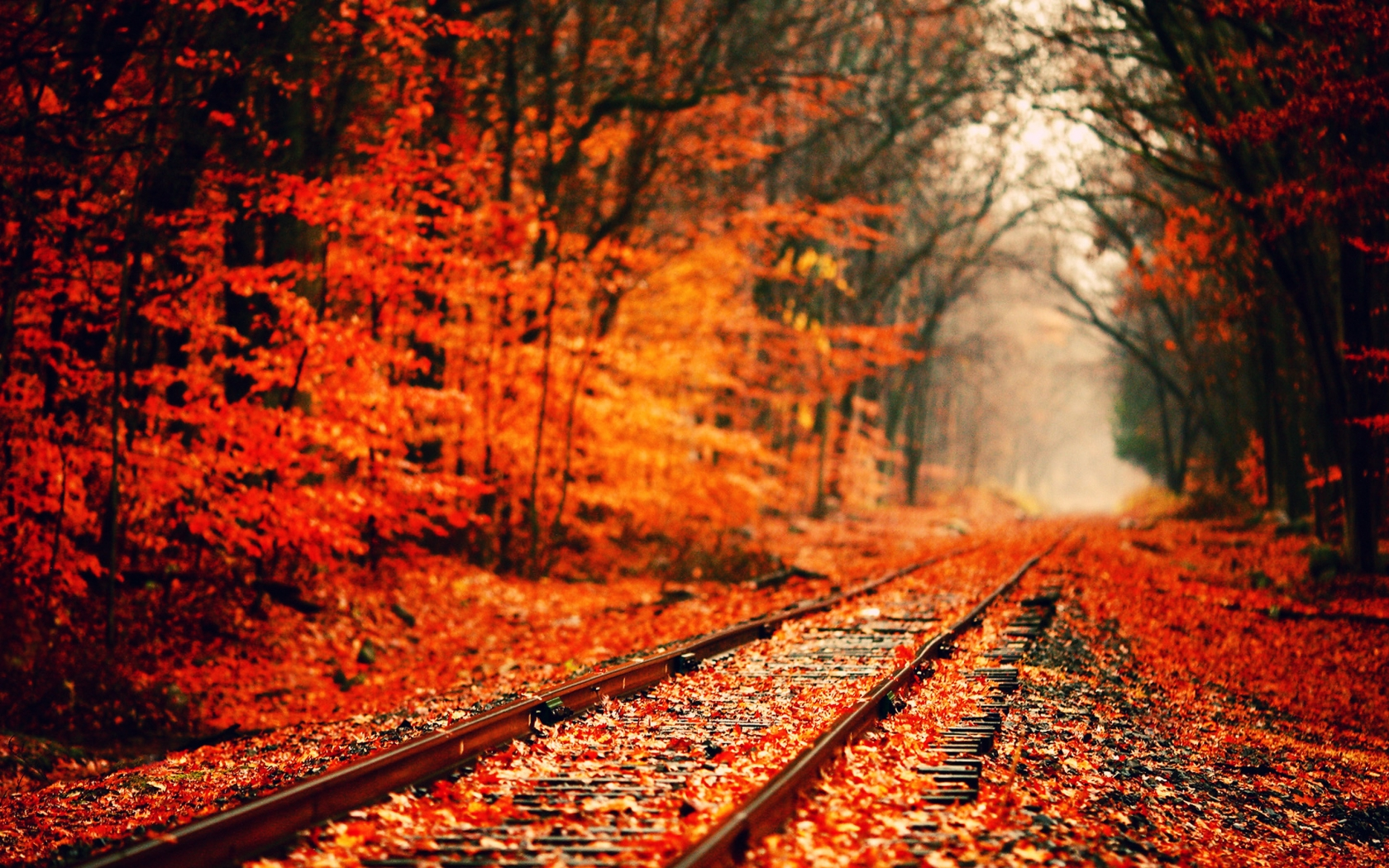 Autumn Computer Wallpaper