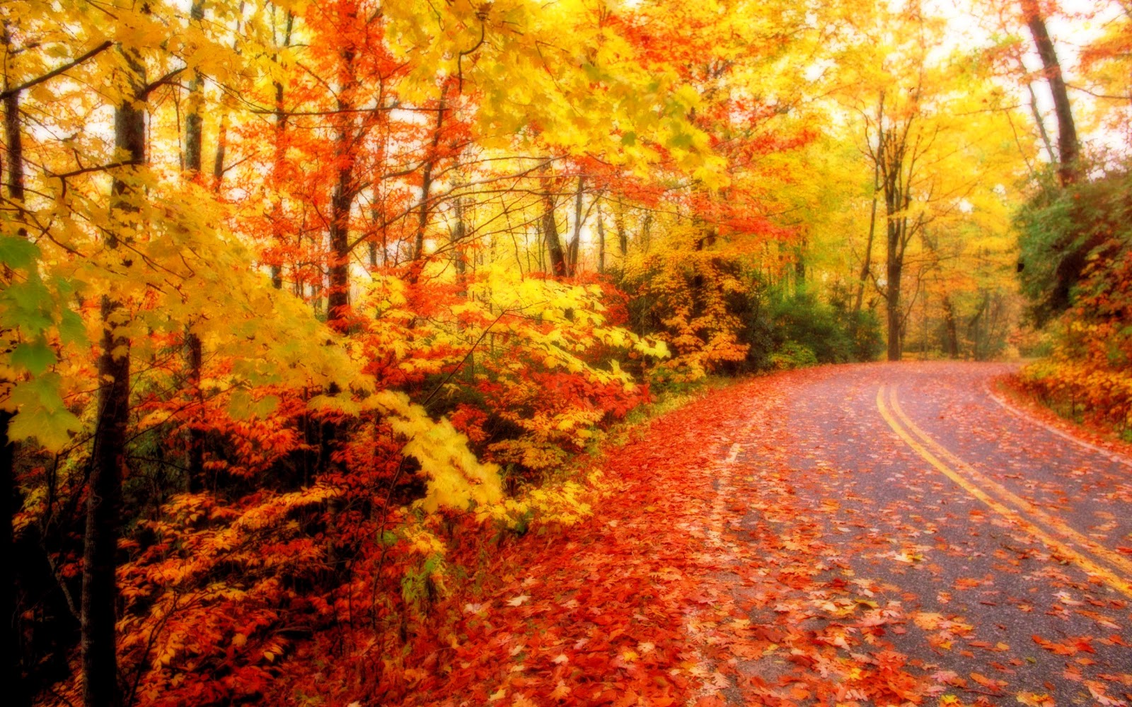 Collection of Autumn Computer Wallpaper on HDWallpapers