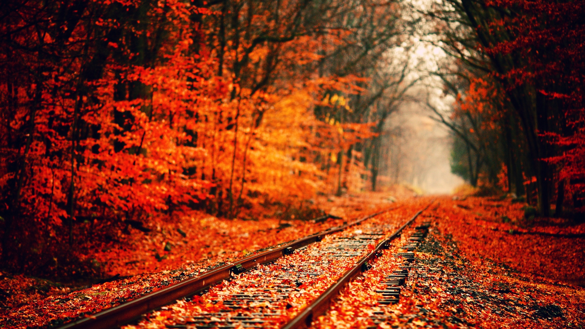 HD Fall Desktop Wallpaper - WallpaperSafari