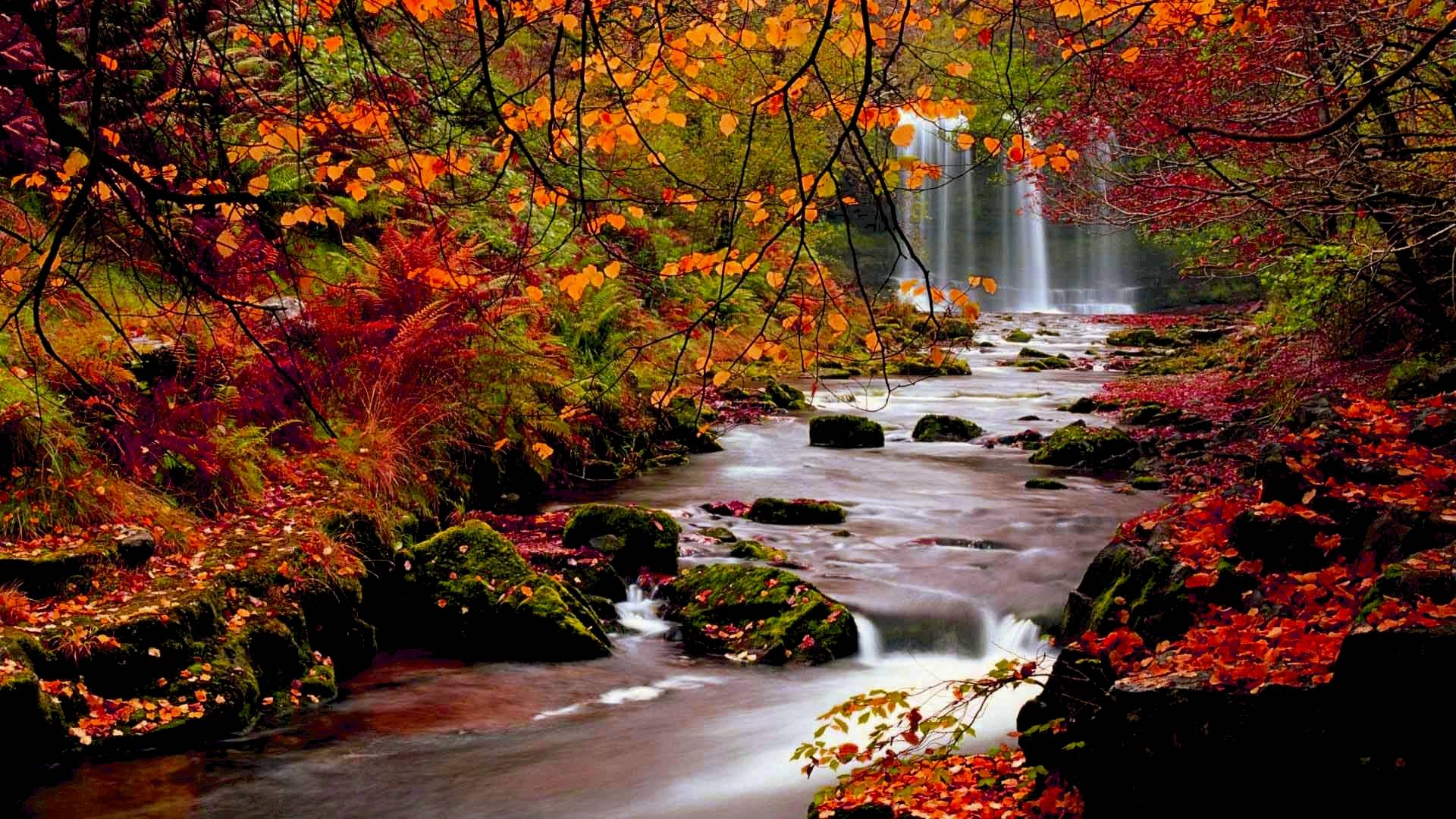 Fall Themed Desktop Backgrounds Group (71+)