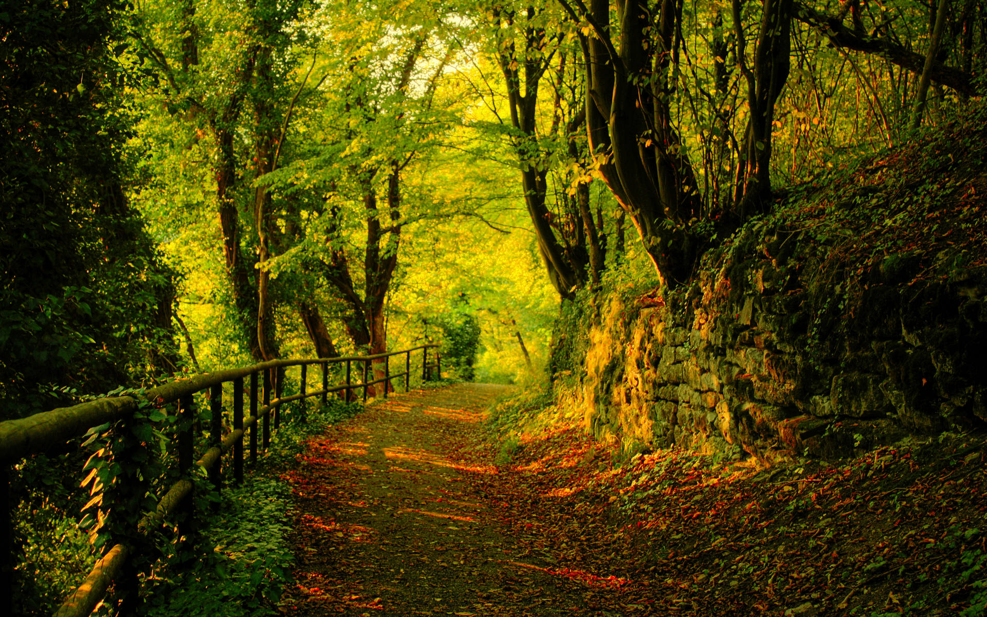 Collection of Autumn Images Desktop Background on HDWallpapers