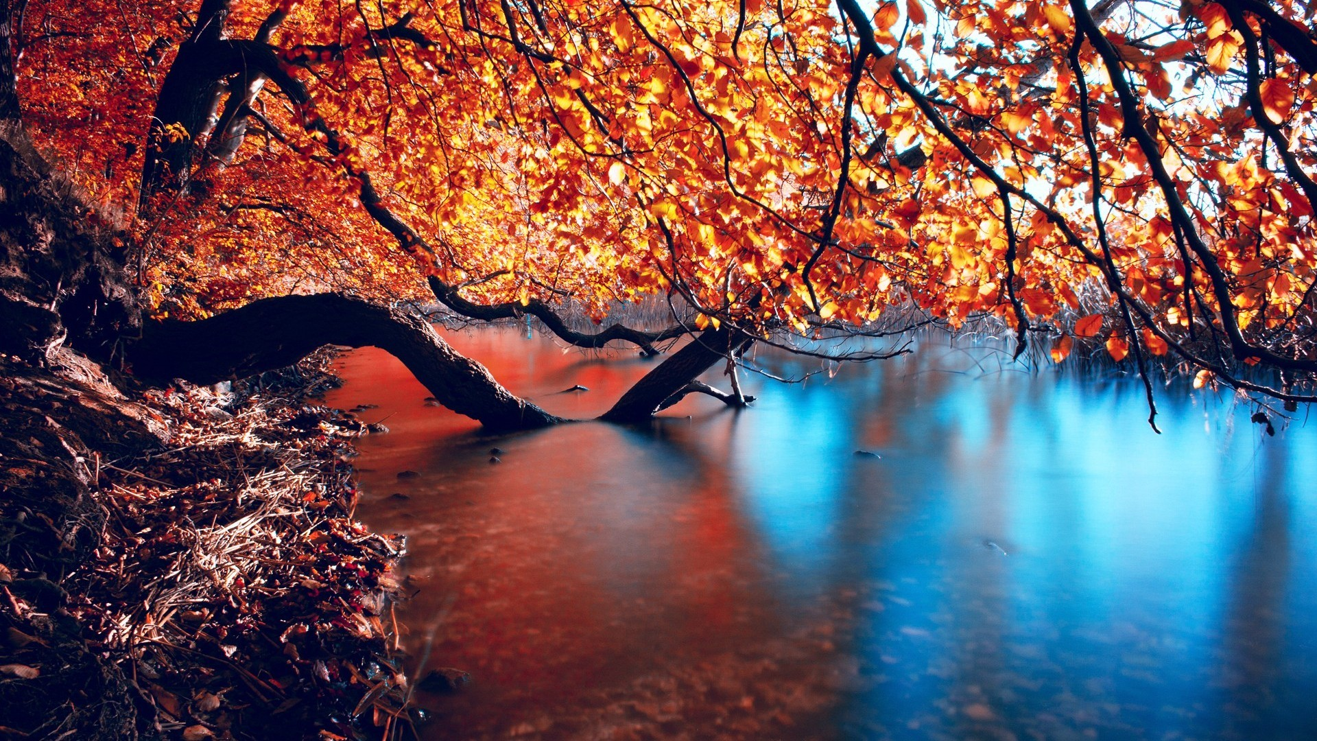 Collection of Autumn Wallpaper Hd on HDWallpapers
