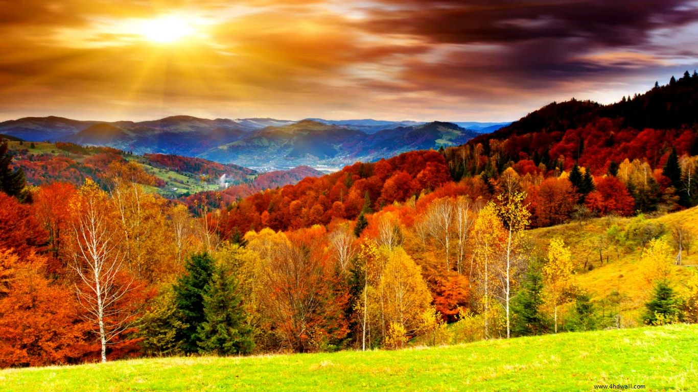 Autumn Season Wallpaper HD Wallpaper 12 - Hd Wallpapers