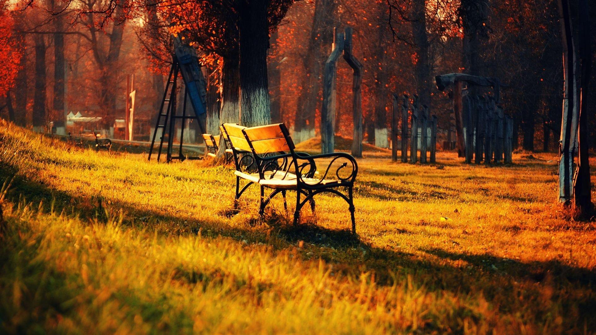 Autumn HD Widescreen Wallpaper - WallpaperSafari