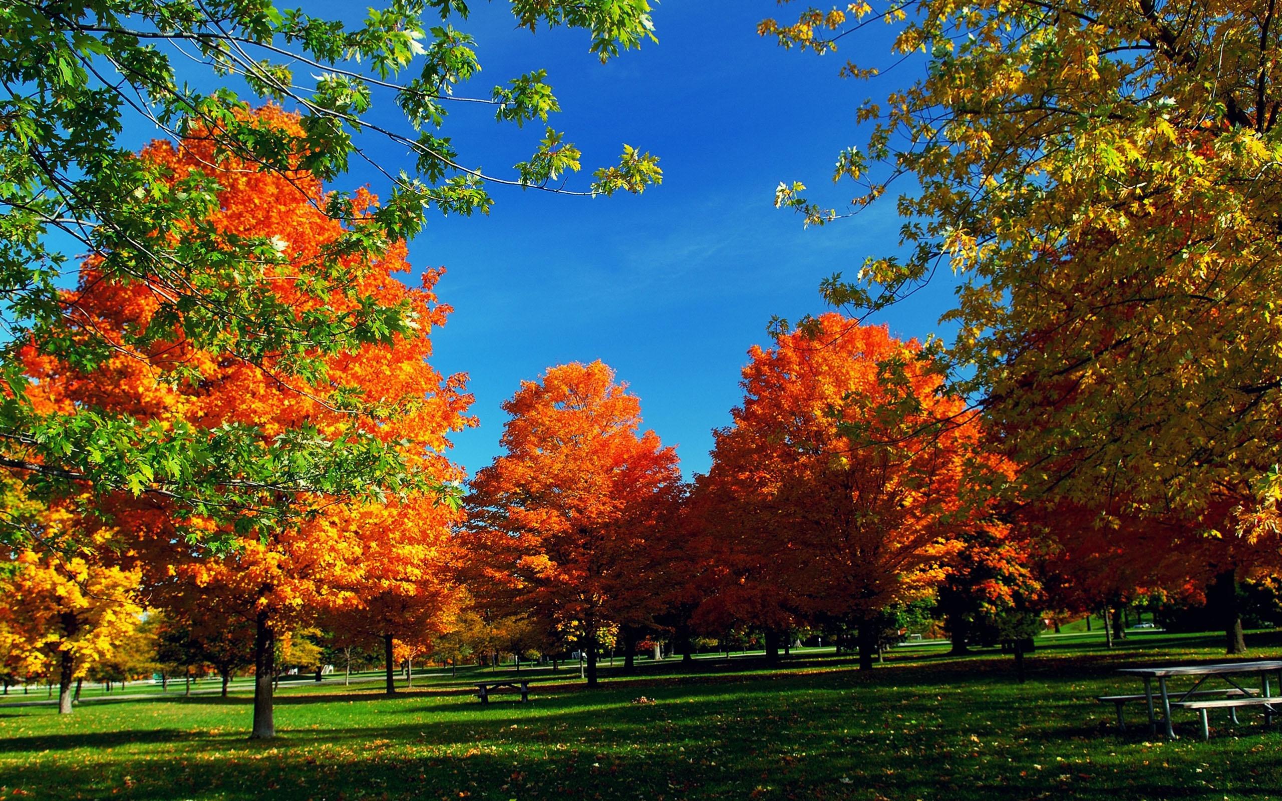 66 autumn wallpaper widescreen Pictures
