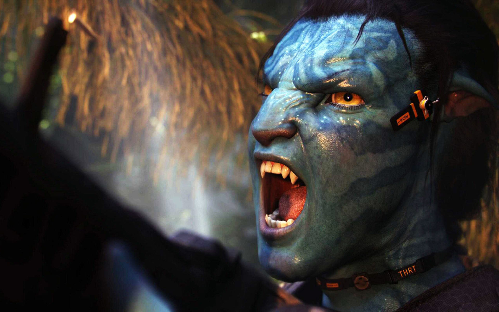 76 avatar hd wallpaper Pictures