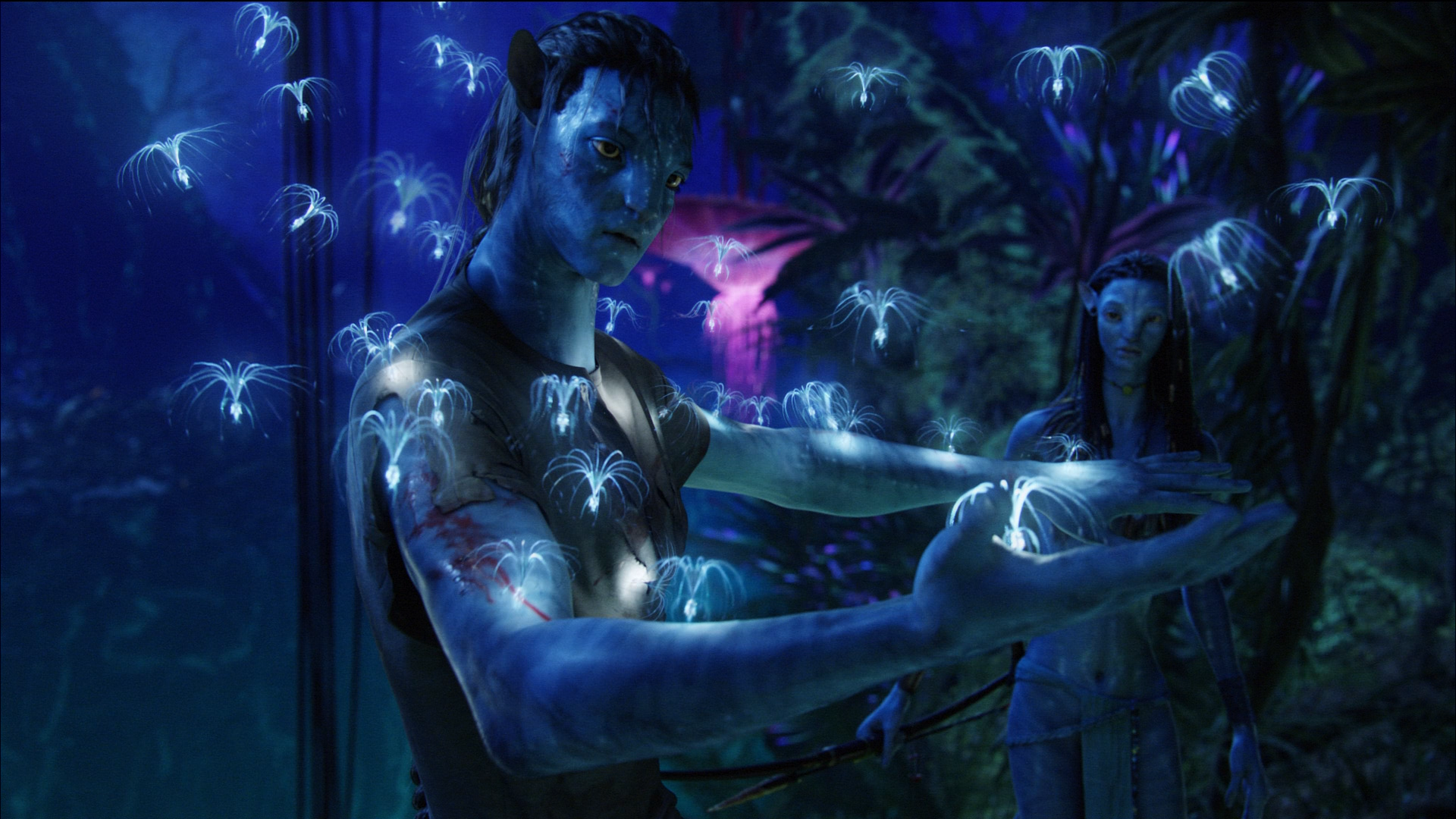 Original Avatar HD Wallpapers for All Avatar Wallpaper Fans