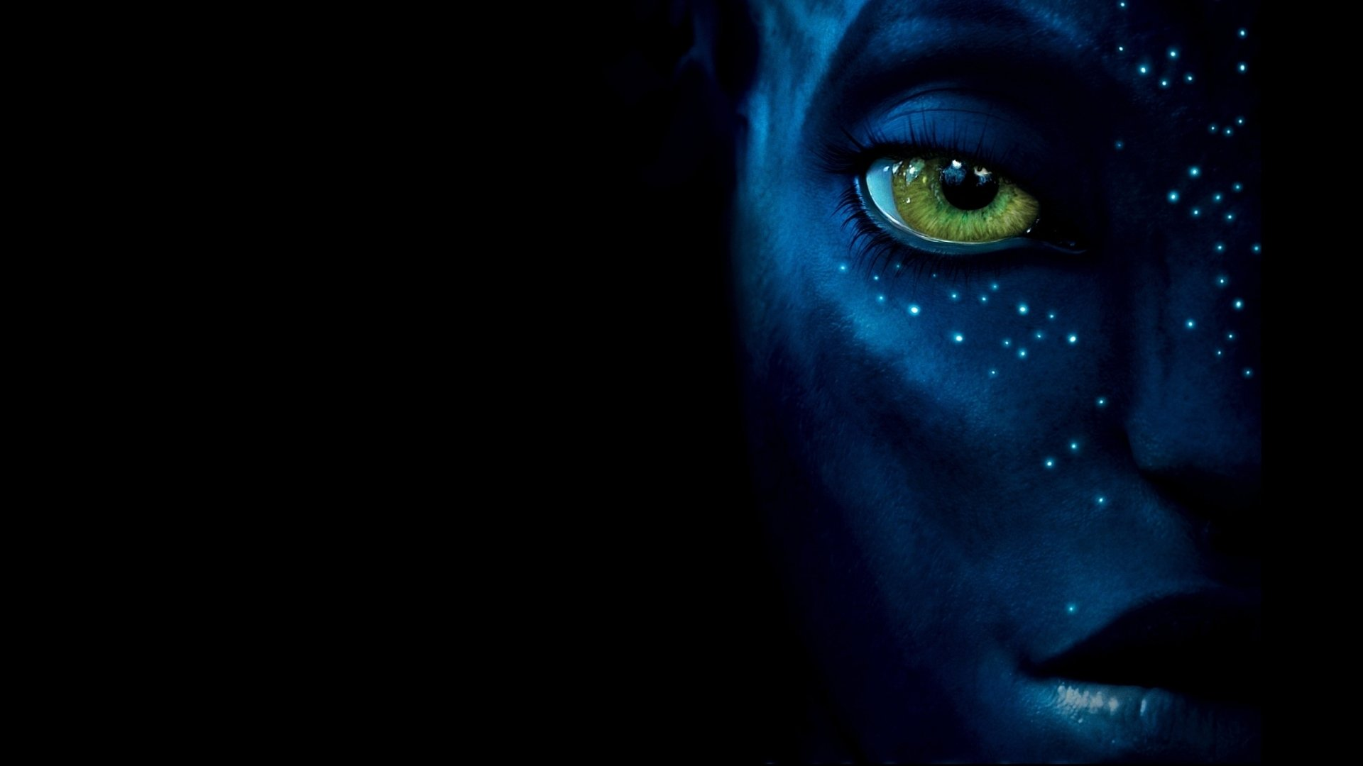 Avatar Computer Wallpapers, Desktop Backgrounds | 1920x1080 | ID:76146