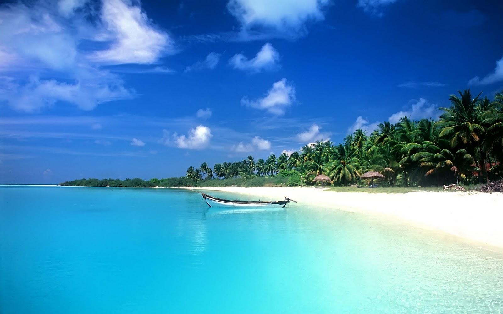 Beach Backgrounds