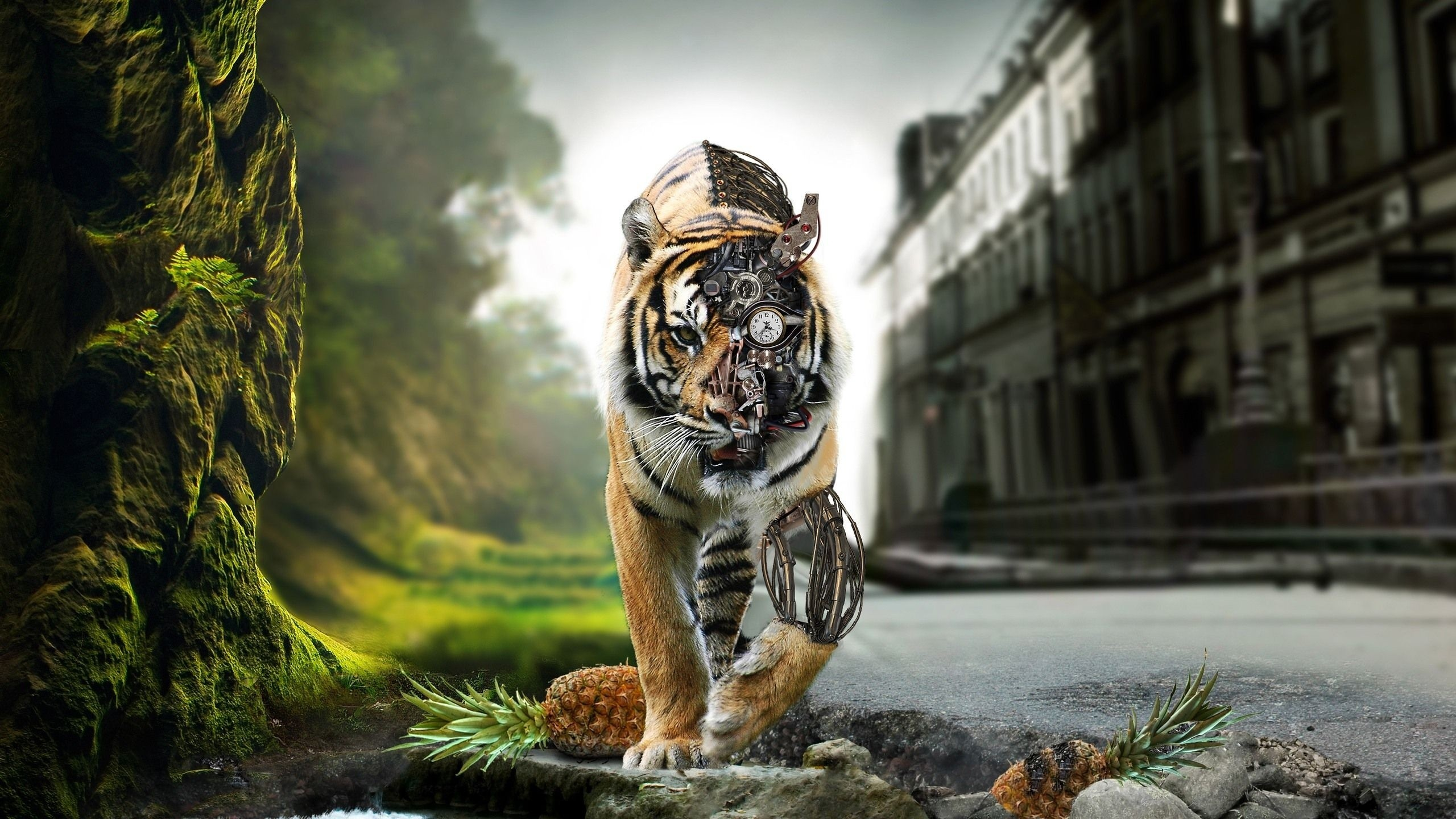 2560x1440px Awesome Wallpapers Hd Tiger | #297517