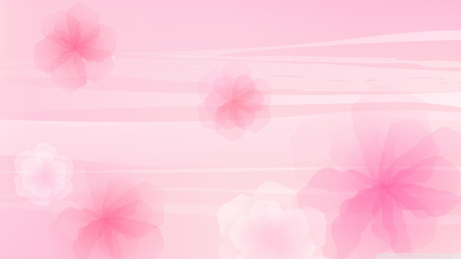 Background Images Flowers Pink Sf Wallpaper